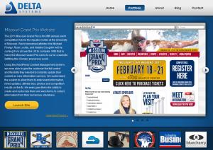 View Delta Systems' Website Design Portfolio